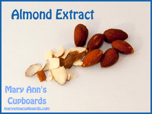 Almond by Michael Zimmerman
