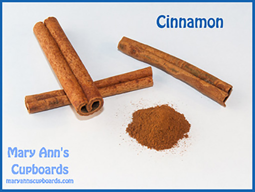 Cinnamon by Michael Zimmerman