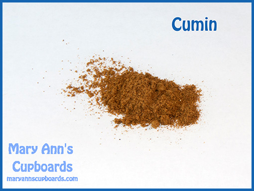 cumin powder  by Michael Zimmerman