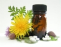 Homeopathy an Introduction - Part 2