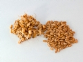 Wheat Berry Recipes